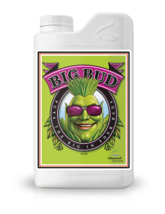 Big Bud 500 Ml / Adn