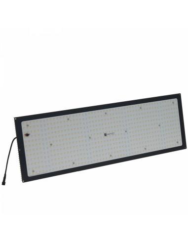 Panneau Led Quantum Board 240w -...